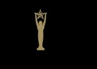 Silver Finalist Tommie Award 2017
