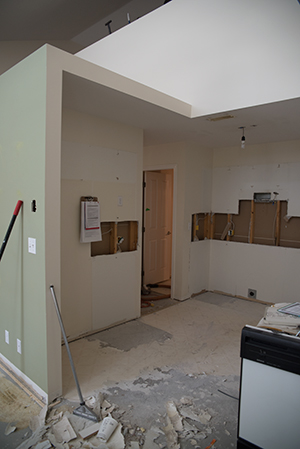 Renovation in Progress: Kitchen